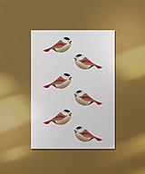 Grafika - Vtáčiky kartička/pohľadnica - 12443217_