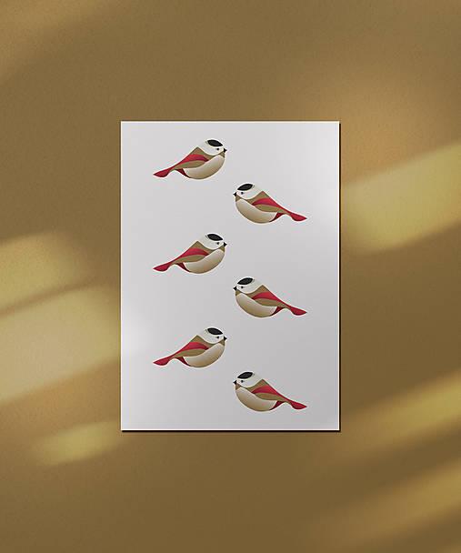 Vtáčiky kartička/pohľadnica