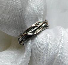 Prstene - Prepletené prúty - 12470727_