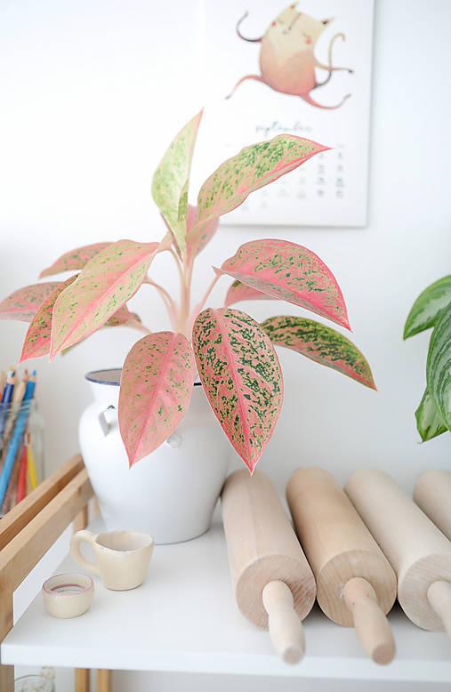 4 lekcie výroby úžitkovej keramiky