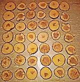 Pomôcky - Drevené pláty zo stromu jabloň - sada 42 kusov - 12487427_