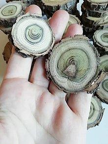 Dekorácie - Drevené plátky farebné (1/okrúhle) - 12489870_