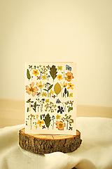 Papiernictvo - Pohľadnica - 12501509_