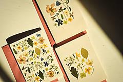 Papiernictvo - Pohľadnice - set 3ks - 12501527_