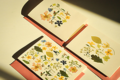 Papiernictvo - Pohľadnice - set 3ks - 12501531_