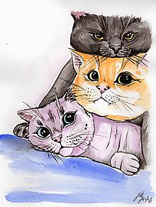Obrazy - Trio - tlač A4, A3 - 12515702_