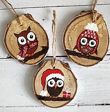 """Dekorácie - Vianočné ozdoby """"Sovy"""" - 12533836_"""