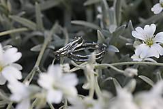 Prstene - Vetvičky strieborné tŕňové, snubný či len tak .. - 12542081_