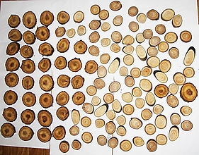Polotovary - Drevené pláty z dreva - sada 101 kusov - 12553041_