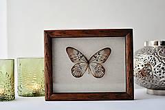 Dekorácie - Idea idea- motýľ v rámčeku - 12560852_