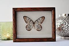 Dekorácie - Idea idea- motýľ v rámčeku - 12560856_