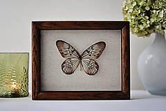Dekorácie - Idea idea- motýľ v rámčeku - 12560864_