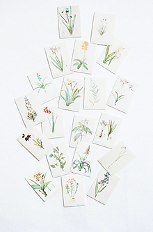Papier - Set mini kariet botanical - 12561903_