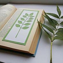 Papiernictvo - Zo stromu... - 12568040_