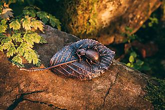 Odznaky/Brošne - Brošňa bystruška kožovitá, čerešňový list - 12610863_