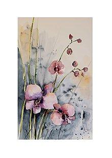 Obrazy - Orchidea - 12621449_