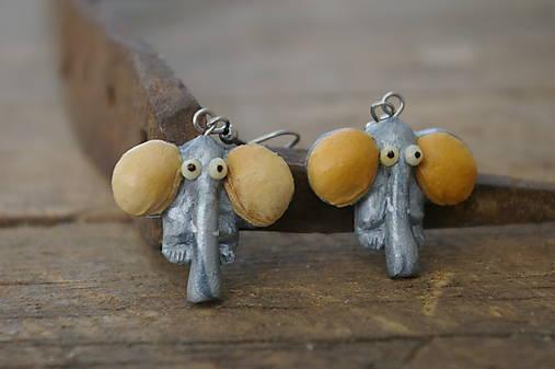 Náušnice Slon čerešňa