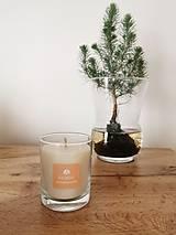 Svietidlá a sviečky - Prírodná vonná sviečka v skle | Citrus - 12638918_