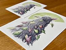 Grafika - Striebro a syngónium - Print | Botanická ilustrácia - 12656044_
