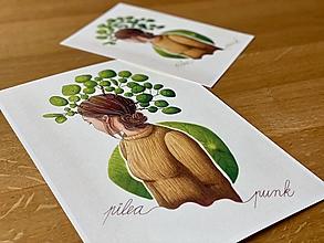 Grafika - Pilea punk - Print | Botanická ilustrácia - 12655871_