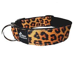 Pre zvieratá - Obojek Dinofashion Leopard (Š:4 cm) - 12655717_