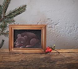 Obrázky - Veľká medvedica - 12665609_