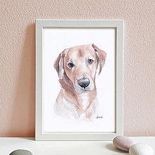 Obrazy - Portrét na želanie- akvarelový portrét psa - A4 - 12672181_