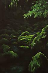 Obrazy - Smaragdový zamatový les s potôčikom - Originál Maľba - 12684628_