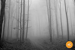 Fotografie - Hmly novembra - digitálna fotografia - pozadie na notebook - 12686094_