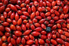 Potraviny - plody ruže šípovej- šípky - 12712472_
