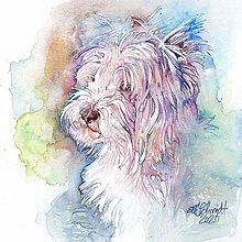 Obrazy - Akvarelový obraz na želanie - portrét psíka - 12714215_