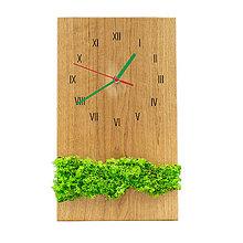 Hodiny - Machové hodiny (Zelená) - 12715143_