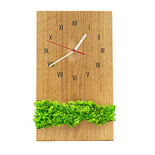Hodiny - Machové hodiny (Biela) - 12715151_