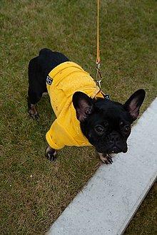 Pre zvieratká - Mikina pre psíka LOVA - 12743173_