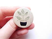 Odznaky/Brošne - brošňa izbová rastlina - 12748277_