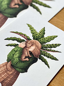 Grafika - Kalatea a klbko šťastia - Print | Botanická ilustrácia - 12749982_