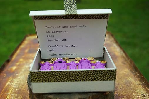 Krabička na magnetky