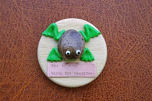 Magnetka Žaba marhuľa