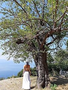 Šaty - Sukňo-šaty dlhšie (S - Biela) - 12761369_