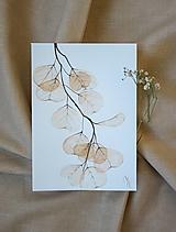 Obrazy - priesvitné kvety- akvarel- originál  - 12784803_