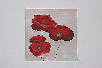 Obrazy - Vlčie maky obraz Akryl na plátne 50 x 50 cm - 12791826_