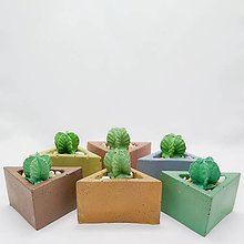 Dekorácie - Dekorácia s betónovým kaktusom Trojuholník malý Color - 12804541_