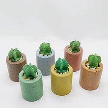 Dekorácie - Dekorácia s betónovým kaktusom Valec Color - 12804563_