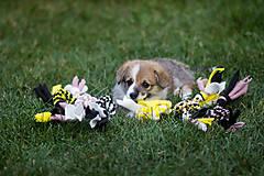 Pre zvieratká - Fleecová hračka - 12807709_
