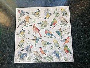 Papier - vtáčikky - 12806667_