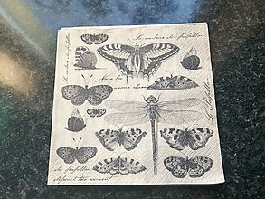 Papier - motýliky - 12806677_