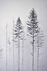 Kresby - V hmlách  - 12808185_