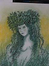 Kresby - Víla Zorana - 12816505_
