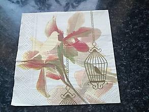 Papier - orchidea - 12817974_