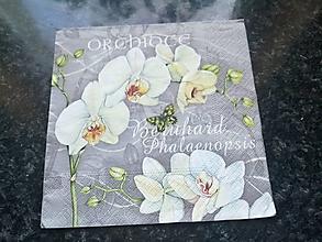 Papier - orchidea - 12818007_